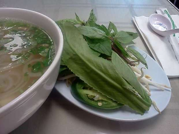 pho at PHO   (great taste but as you can see, mostly broth and herbs)