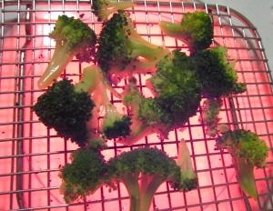 season broccoli florettes with kosher salt, fresh ground black pepper and garlic oil