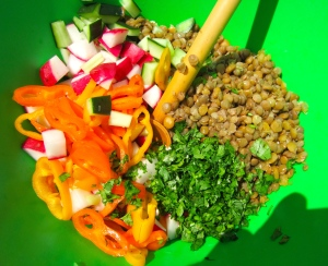 add lentils, chopped cilantro, diced radish, diced cucumbers and sliced chilies, mix well, check / adjust seasoning