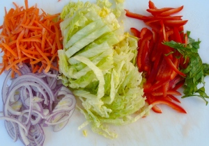 sliced basil, red peppers, iceberg lettuce, red onions, shredded carrots (if you plan to keep this for more than a few hours, replace the iceberg with cabbage)