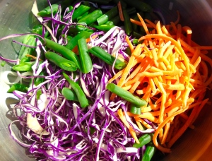 add beans, finely shredded red cabbage, carrots and onions