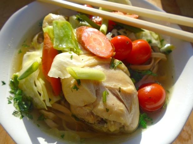 Chicken, Noodle & Vegetable Soup - Recipe # 1001