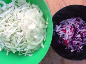 finely sliced onion, white cabbage, red radish, red cabbage