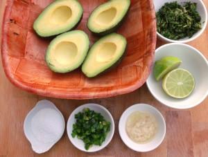 avocado, kosher salt, lime juice, cilantro, jalapeño, garlic (optional)
